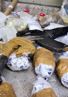 Brazil phá đường dây ma túy trên không quy mô lớn