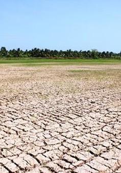 Năm 2019: Bão có xu hướng hoạt động muộn; nguy cơ hạn hán, xâm nhập mặn