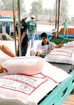 Xuất khẩu chính ngạch 100.000 tấn gạo sang Trung Quốc