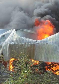 Đồng Nai: Cháy lớn tại xưởng sản xuất lốp ô tô