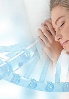 Phát hiện gene gây ngủ
