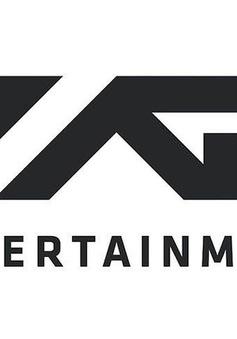 Cổ phiếu YG Entertainment tụt dốc thảm sau scandal của 2 thành viên nhóm Big Bang