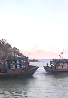 Ngư dân Quảng Ngãi lao đao vì tình trạng bồi lấp cửa biển