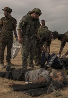 Tấn công thành trì IS cuối cùng tại Syria
