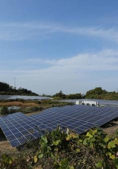 Kinh doanh năng lượng tại Nhật Bản thay đổi sau 8 năm
