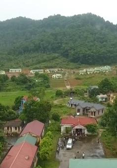 Thanh tra kiến nghị chuyển vụ rừng Sóc Sơn cho công an