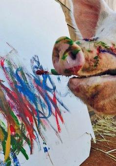 Lợn biết vẽ tranh kiếm tiền
