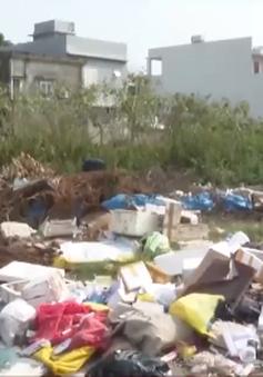 Đà Nẵng: Ô nhiễm môi trường từ các khu đất bỏ hoang