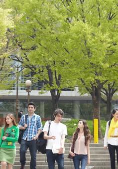 Tác động của việc Hàn Quốc siết chặt quy định cấp thị thực cho sinh viên nước ngoài