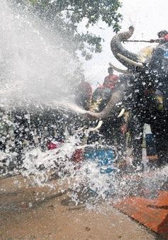 Tưng bừng lễ hội Songkran đón mừng năm mới ở Thái Lan