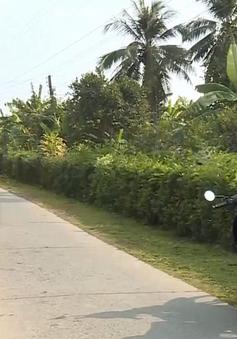 Chương trình 135 thay đổi diện mạo vùng đồng bào dân tộc Khmer