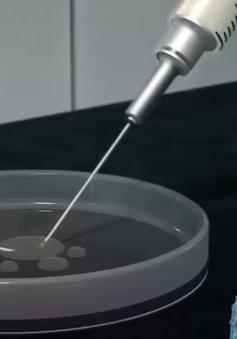 Mỹ: Bắt đầu sử dụng phương pháp chỉnh sửa gen điều trị ung thư