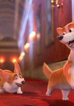 Những chú chó Corgi của Nữ hoàng Anh được đưa lên phim