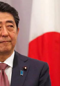 Thủ tướng Nhật Bản gửi đồ lễ đến đền Yasukuni