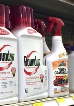 Nguy cơ ung thư từ thuốc diệt cỏ Glyphosate