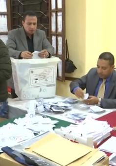 Ai Cập kiểm phiếu trưng cầu dân ý về sửa đổi Hiến pháp