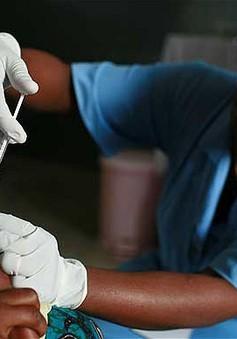 Châu Phi bắt đầu chiến dịch tiêm chủng vaccine phòng bệnh sốt rét lớn nhất trong lịch sử