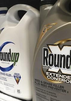 Áp dụng biện pháp sinh học thay cho phun thuốc diệt cỏ chứa Glyphosate