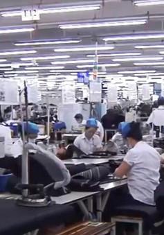 Đơn hàng dệt may cho năm 2020 giảm mạnh