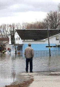 Canada ban bố tình trạng khẩn cấp về lũ lụt tại thủ đô