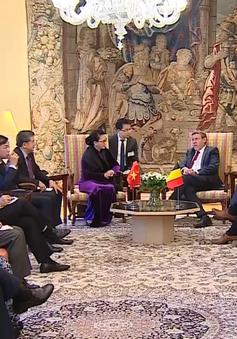 """""""Việt Nam rất coi trọng quan hệ với Vương quốc Bỉ"""""""
