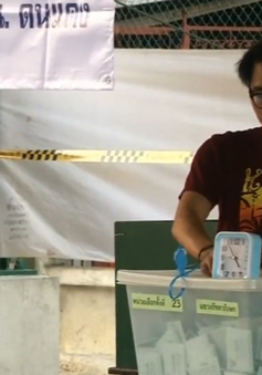 Thái Lan kiểm phiếu và bầu cử lại tại một số điểm bỏ phiếu