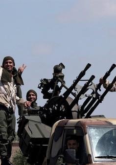 EU kêu gọi ngừng bắn nhân đạo tại Libya