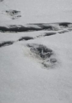 """Quân đội Ấn Độ đăng ảnh phát hiện """"người tuyết"""""""