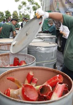 Malaysia thiêu hủy gần 4 tấn ngà voi