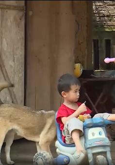 Hỗ trợ xây nhà cho người dân nghèo tỉnh Tuyên Quang