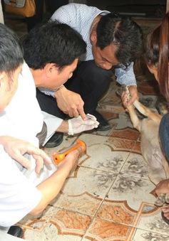 Kiểm tra, xác định nguyên nhân 3 ca tử vong nghi do ký sinh trùng tại Hà Tĩnh