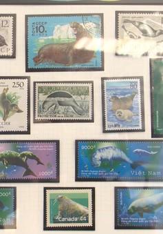 Đam mê bất tận với bộ tem Sự sống đại dương
