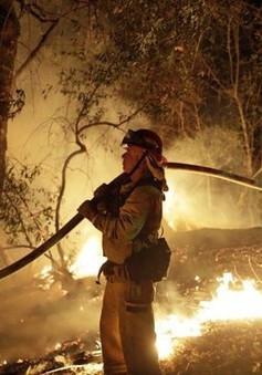 Cháy rừng ở California năm 2018 là do sự cố đường dây truyền tải điện