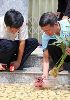 Đắk Lắk: Số ca mắc sốt xuất huyết tăng 4 lần