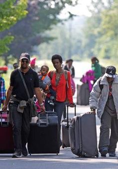 Số đơn xin tị nạn vào Canada tăng mạnh