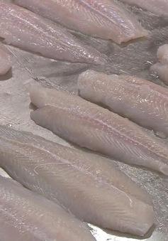 Cá tra Việt Nam được ưa chuộng tại Nhật Bản
