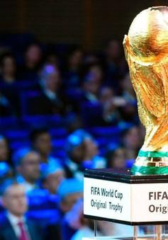 FIFA ra thông báo chính thức về số lượng đội tham dự World cup 2022