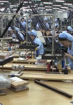 Hà Nội: Bình quân 38 người có 1 doanh nghiệp