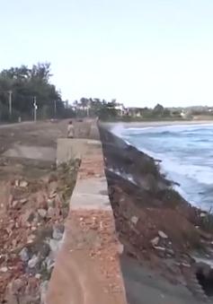 Quảng Ngãi khẩn cấp đề nghị chính phủ hỗ trợ khắc phục sạt lở bờ biển