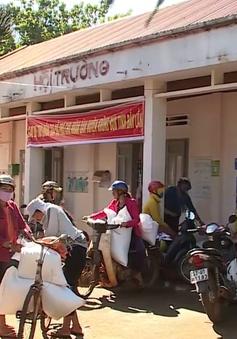 Xuất cấp hơn 700 tấn gạo hỗ trợ hộ nghèo Đăk Lăk