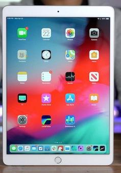Trường đại học cung cấp miễn phí iPad cho sinh viên năm thứ nhất