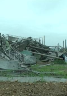 Mưa lũ gây thiệt hại nặng tại miền núi phía Bắc
