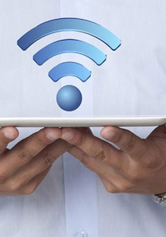 Sóng wifi có thể làm giảm khả năng sinh sản ở nam giới