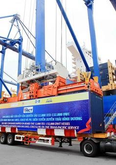 Đón chuyến tàu container đầu tiên cập Cảng container quốc tế Tân Cảng Hải Phòng