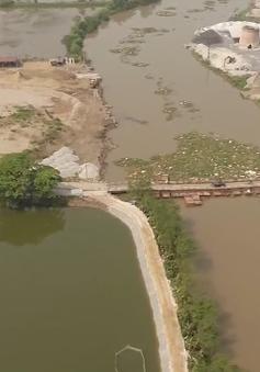 Khởi công cầu sông Hóa kết nối Hải Phòng - Thái Bình