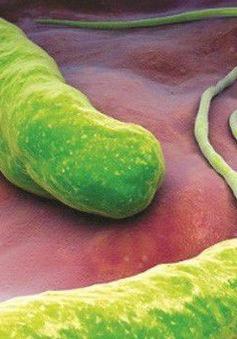 """Thực phẩm giúp """"triệt hạ"""" vi khuẩn HP"""