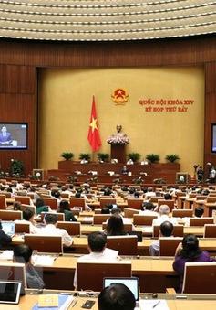 Quốc hội thảo luận Luật Lực lượng dự bị động viên và Luật Thư viện