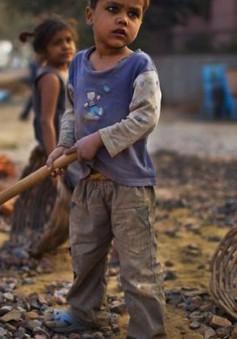 Ngày thế giới phòng chống lao động trẻ em