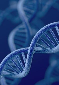 Thúc đẩy ứng dụng trí tuệ nhân tạo trong giải mã gen tại Việt Nam