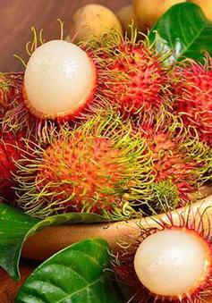 Lá và trái chôm chôm Việt Nam được chiết xuất thành mỹ phẩm